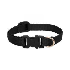 """Lupine Black Large Dog Collar 12-20"""""""