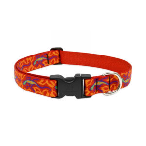 "Lupine Go Go Gecko Large Dog Collar 12-20"""