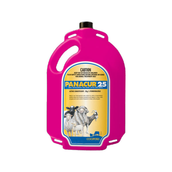 Coopers Panacur 25 Drench for Sheep